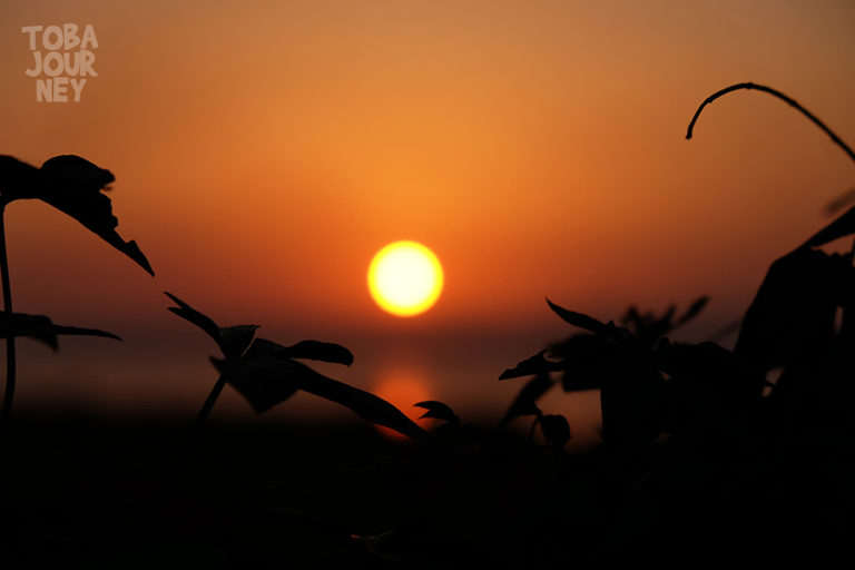 Matahari Toba