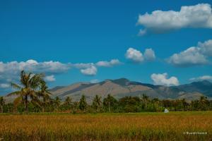 Flores-NTT-Indonesia-Riyanthi-3033
