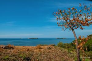 Flores-NTT-Indonesia-Riyanthi-3355