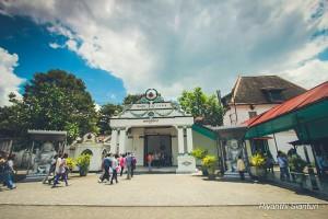 Yogyakarta 3 8060