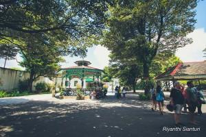 Yogyakarta 3 8067